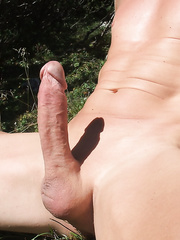 My shaved hairless cock erect penis outdoor in the sun