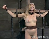 Sweet bounded beauty with a gag in her throat willing for torture