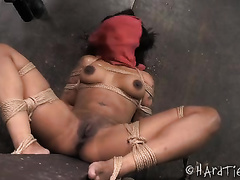 Ebony brunette hair girl bounded with ropes involved in sadomasochism play