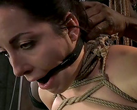 Naughty dark brown cutie bounded and prepared to be punished