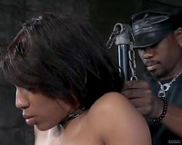 Sexy swarthy slave with teat clamps receives her wet crack toyed