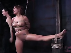 Good looking floozy with massive milk sacks acquires her pussy drilled indeed hard