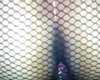 My amateur wife in fishnet hose lets me fuck her wet crack from behind