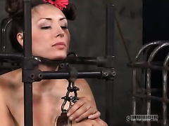 Two lusty gals bounded in cage feed every other and acquire willing for tortures
