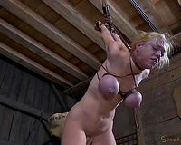 Messy haired wild blond is fixed in strappado thraldom pose and gets fucked
