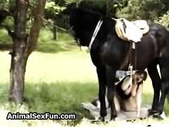 A man fucks me while I suck cock to a horse