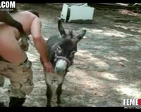 Donkey fuck gay! Dick craving dude bends over and gets fucked by a donkey in this animal sex video