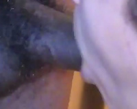 Pallid tattooed horn-mad Married slut gave BJ in advance of taking BBC in her wet crack