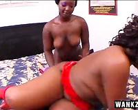 Two curvy dark divas have a fun torrid mutual rug munch