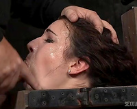 Hot and cute white brunette hair fixed in pillory and facefucked with BBC