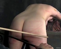 Skanky playgirl with tattoos receives her wazoo whipped hard