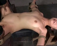 Stunning and lean Asian wench restrained in starfish position