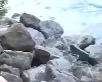 My curvaceous milfie dirty slut wife disrobes near the river