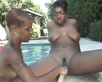 Ebony honey gets a biggest hard sex toy in her muff