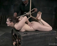 Curly haired skank is a ready servitude slave in the BDSM dungeon