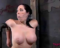 Bodacious gal with large marangos has no other choice but to obey her mistresse