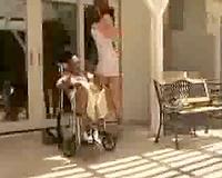 Stunning abode nurse takes care of Shorty Mac