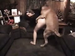 Animal Sex- Rrivate vids my wife fuck our dog on webcam