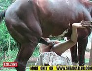 A slutty wife fucked by a horse. Here is a good bestiality amateur sex video