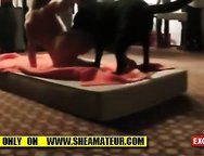 MY Wife Gangbanged with dog at Swingers Club