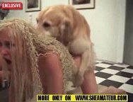 A slut wife forced to fuck with a dog-At the beginning of this animal sex video,