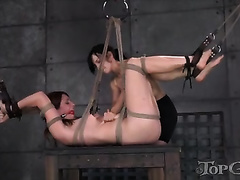 Dissolute dark brown serf suspended by her domme and tortured