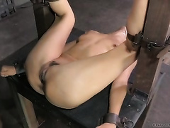 Brunette white wife tries to please her masters indeed hard