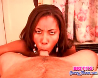 Busty dark white wife sucks a shlong in hotel room
