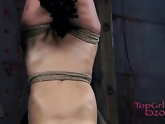 Salacious nympho with tattoos is hanging upside down in the dungeon