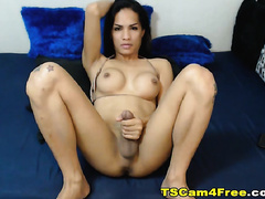 Horny Shemale Strokes her Cock
