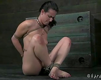 Bounded brunette hair honey acquires a ball gag in her throat in advance of torture