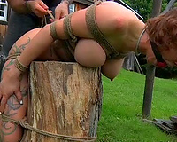 Poor bounded playgirl is humiliated and forced to eat sexy and smelly food