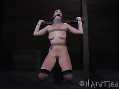 Seductive bounded pippin with great rack is bounded by her wicked mistresse