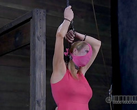Pigtailed golden-haired bimbo is chained and willing for any kind of torture