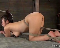 Lovely Asian Married slut stands bounded on all fours after some tortures
