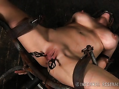 Sexy whore with large hooters got clamps on her labia and tortured by her corporalist
