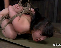 Hogtied thrall with priceless gazoo is hanging in the air