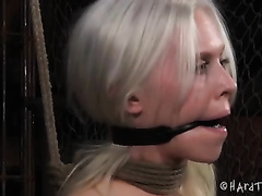 Blonde beauty with nipple clams on miniature brassiere buddies receives her holes nailed with toy