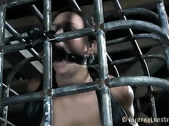 Naughty black brown playgirl bounded in cage sucks a fake knob
