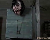 Horny brunette hair bitch with a mask on her head has to suffer in the barn