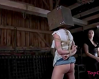 Raunchy mastix encloses her slave's head in a wooden box
