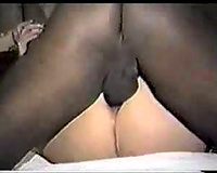 Chubby dark brown in nylons acquires permeated by a dark stud-horse