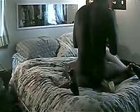white bitch engulfing her husband's large dark jock
