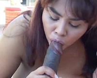 Busty hottie engulfing dark dick