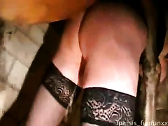 I'm slutty wife i love animal sex, watch as my horse fucking my big ass a lot