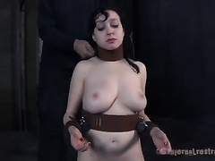 Busty dark brown with collar on her neck gives oral to her taskmaster