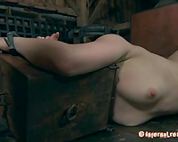 Lusty black cock sluts with head box above her shoulders is ready for torment