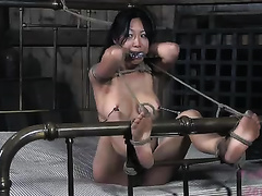 Dark-haired Asian honey receives totally dominated in this BDSM scene