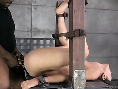 Nasty brunette hair thrall acquires her face overspread with sperm